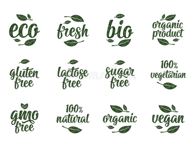 Gluten, lactose, sugar, Gmo free, bio, eco, fresh calligraphic handwriting lettering with leaf, cube, drop. Vector white vintage vector illustration