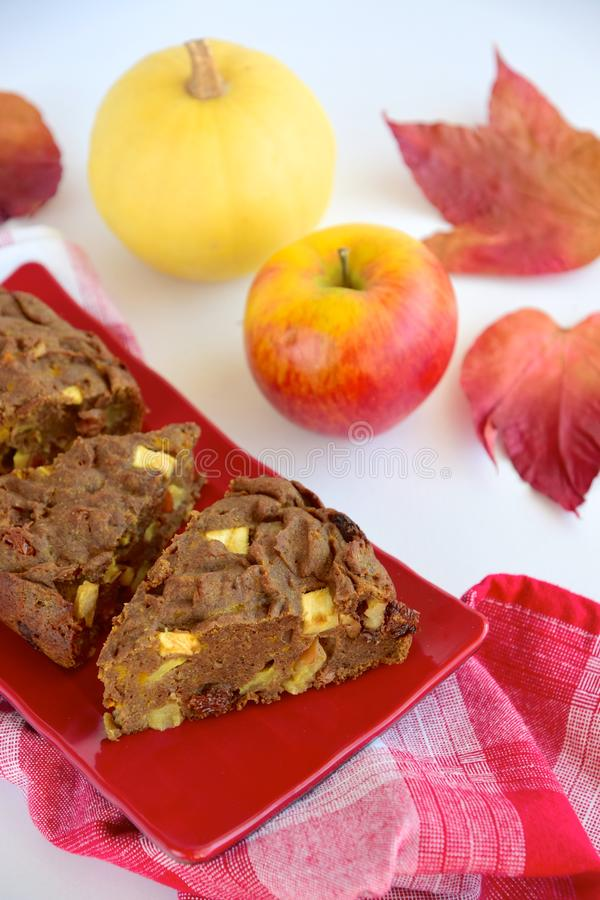 Glutenfreier veganischer Schokoladenkürbis lizenzfreie stockfotos