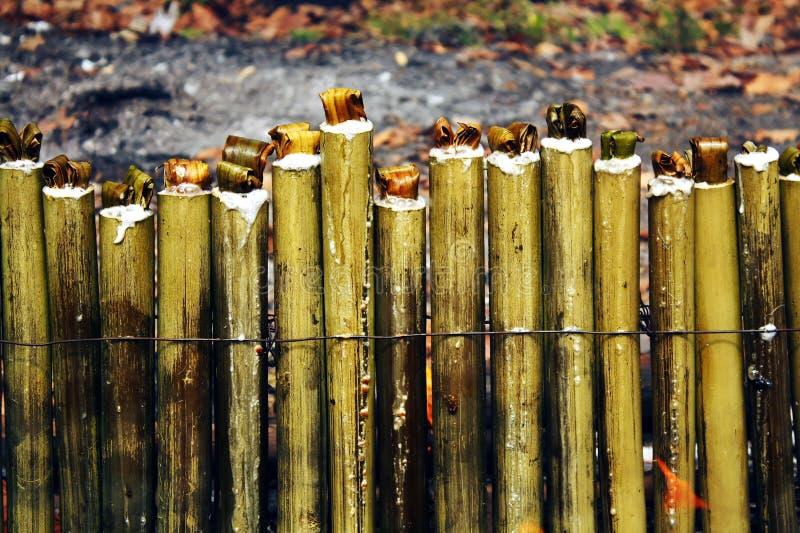 Glutinous рис зажаренный в духовке в бамбуковых соединениях стоковые фотографии rf