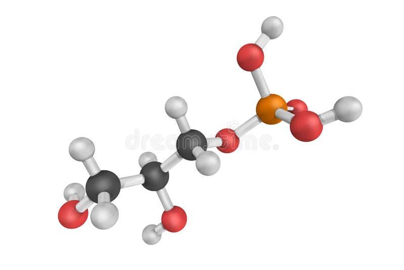 Glycerophosphoric Zuur, dat ook als 3-Phosphoglyceric zuur, a wordt bekend royalty-vrije stock foto