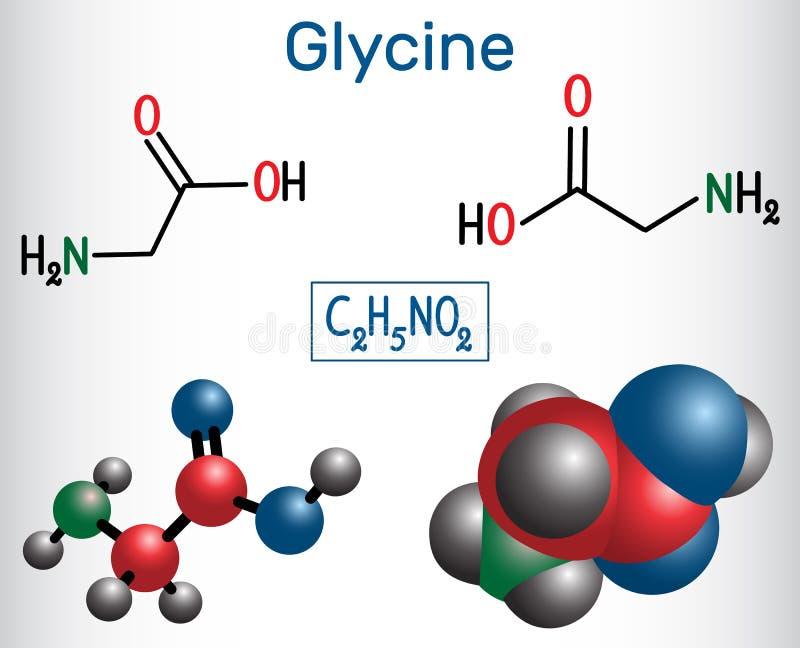 Glycine Gly eller G, är aminosyran Strukturell kemisk form royaltyfri illustrationer