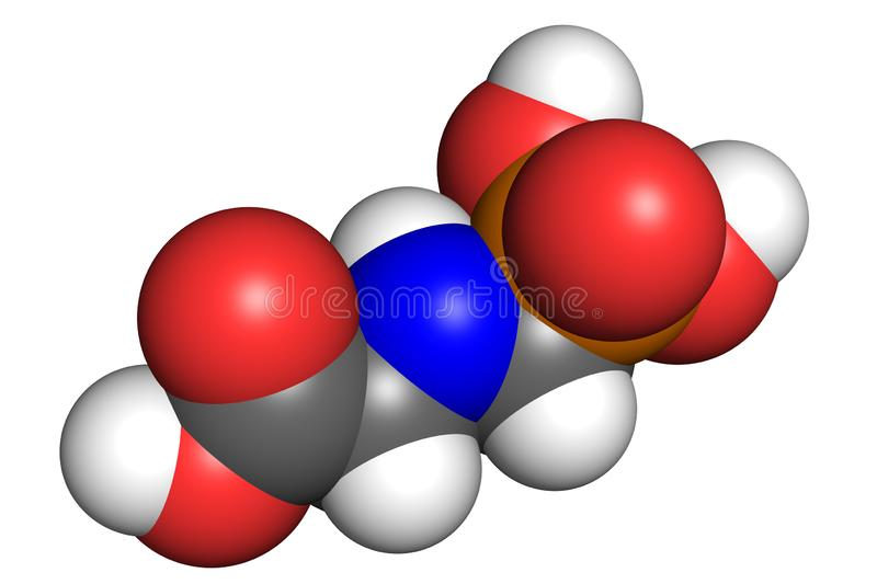 Glyphosate model. Glyphosate is a widely used broad-spectrum herbicide. Space-filling model, conventional atom colouring vector illustration