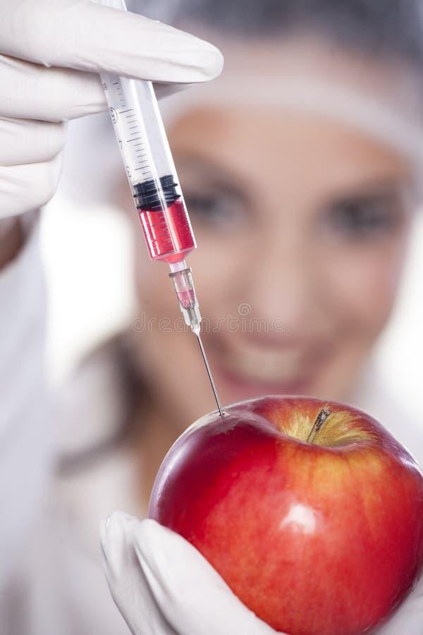 GMO实验 图库摄影