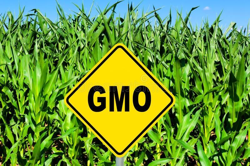 GMO标志 免版税库存照片