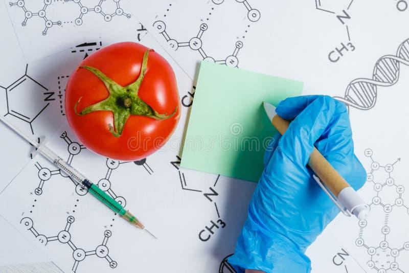 GMO科学家做笔记,在注射器,红色蕃茄-基因上修改过的食物概念的绿色液体 库存照片