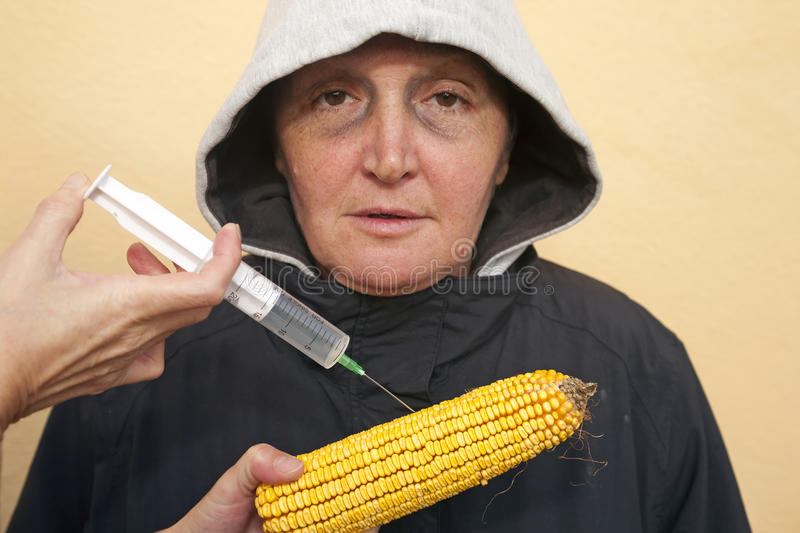 GMO corn. Genetically modified organism, ill woman with GMO corn royalty free stock photography