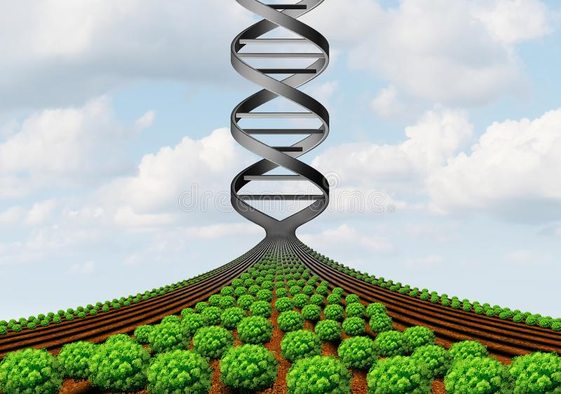 GMO cultivant la Science illustration libre de droits