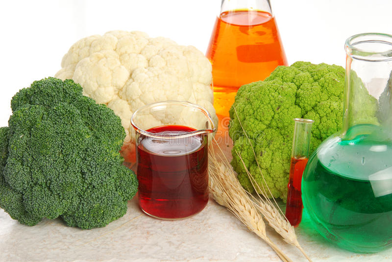 GMO Food. Genetically modified food showing broccoli, cauliflower and chemicals royalty free stock images
