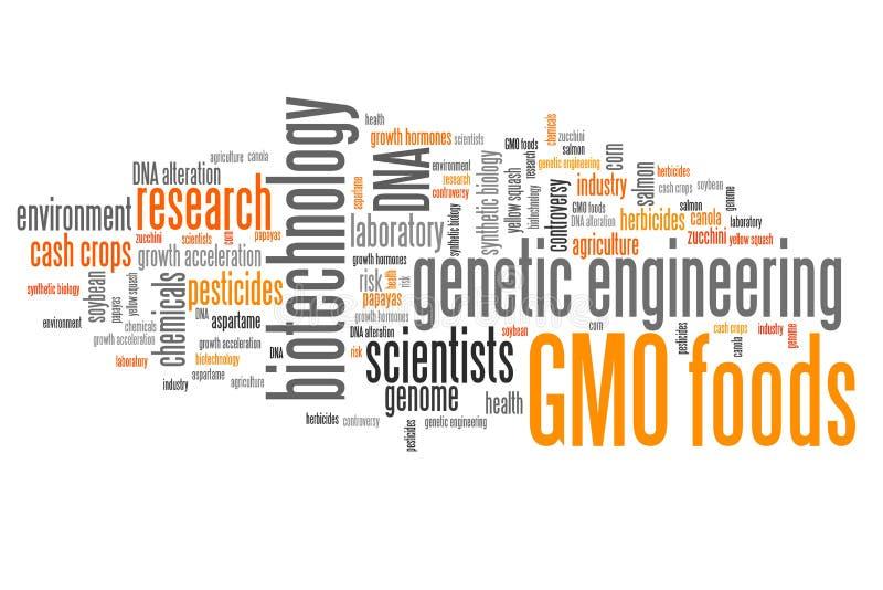 GMO foods ilustracja wektor