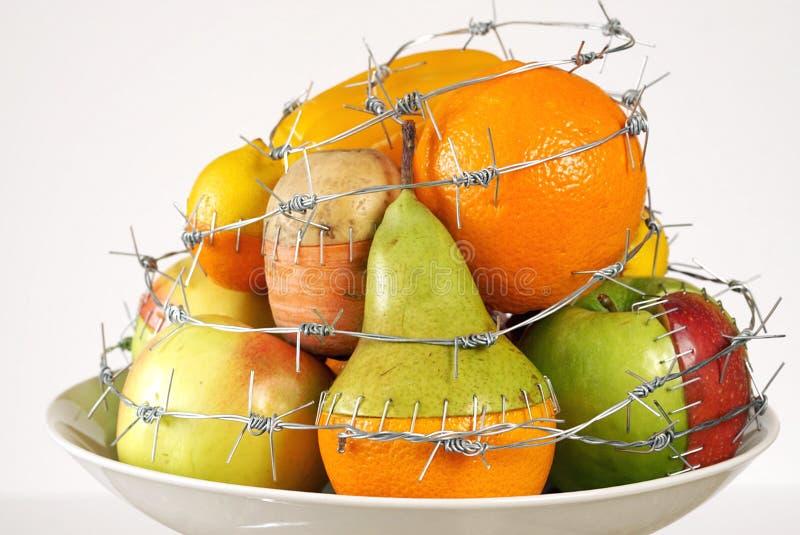 GMO foods GMO begreppet förändrade sig genetiskt eller ändrad mat arkivfoton