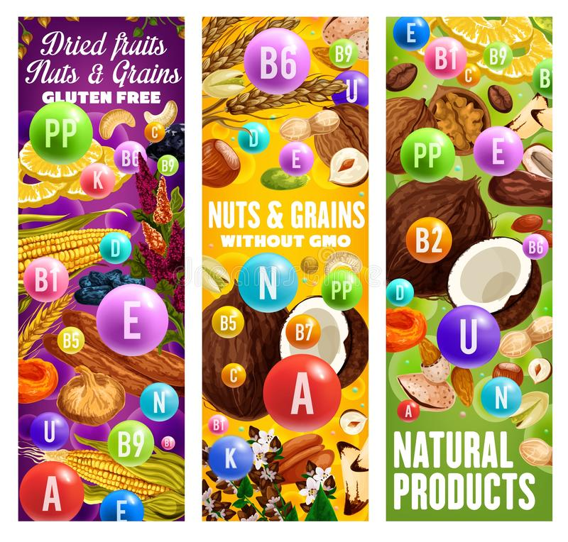 GMO free nuts, dried fruits and grains. Gluten free dried fruits, grains and nuts with complex of A, U, N, E vitamins. Vector natural products without GMO vector illustration