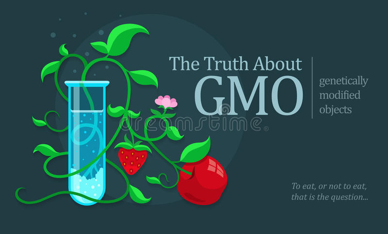 GMO genetically modified fruits growing in test tube stock illustration