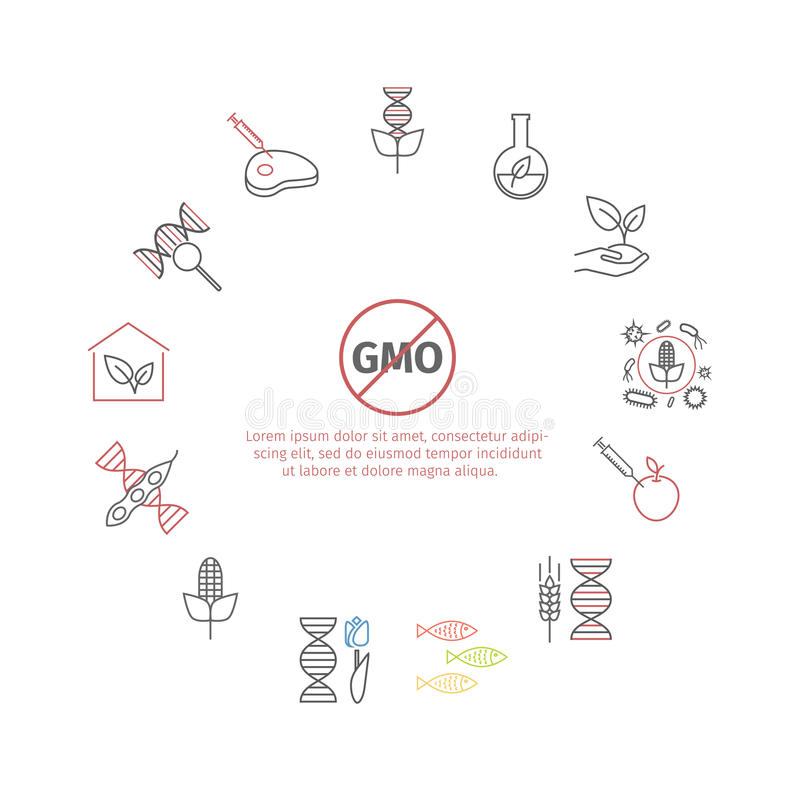 GMO. Genetically modified organism. Line icons set. Vector signs. For web graphics stock illustration