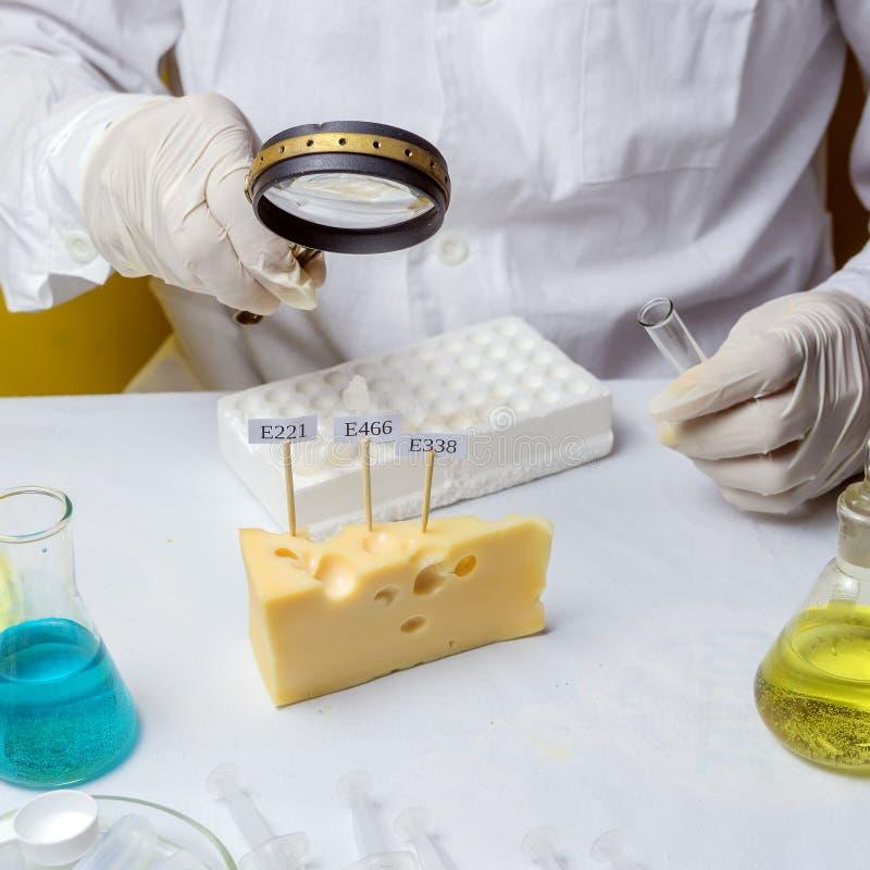 GMO genetiskt ?ndrad mat i labbbegrepp tillvägagångssätt för laboratorium för säkerhet för mat för labbassistent som analyserar f royaltyfri fotografi