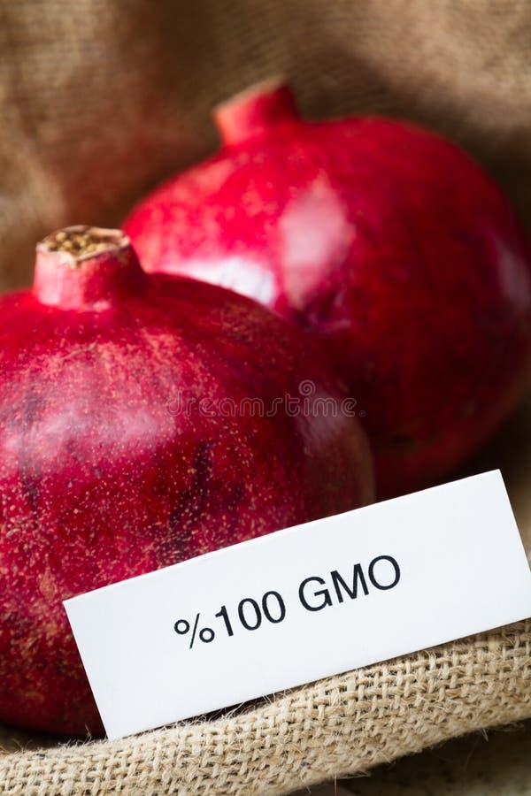 GMO granatäpplen royaltyfri bild