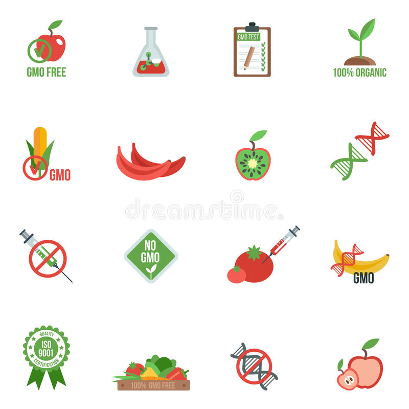 Gmo Icons Flat. Gmo with genes modified food and warning information icons flat set isolated vector illustration royalty free illustration
