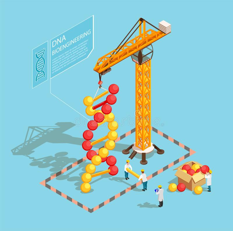 GMO Isometric Composition. GMO bio engineering isometric composition on blue background with scientists during building of dna structure vector illustration vector illustration