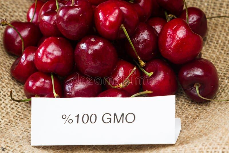 GMO körsbär arkivfoton