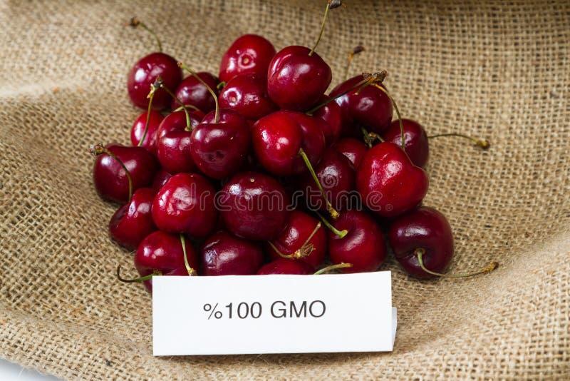 GMO körsbär royaltyfria foton