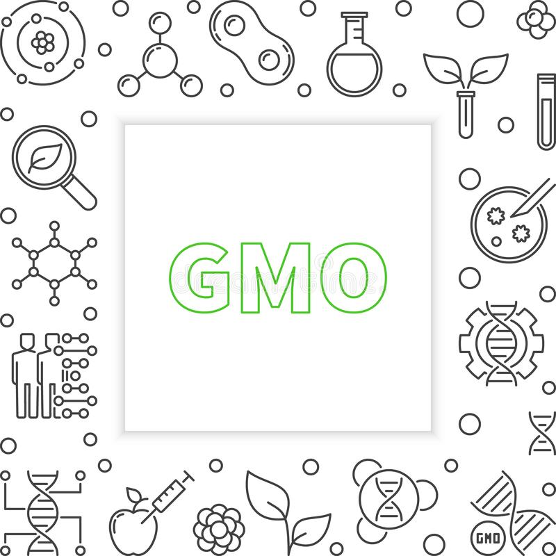 GMO square frame in thin line style. Vector illustration. GMO square frame in thin line style. Vector Genetically Modified Organism concept illustration royalty free illustration