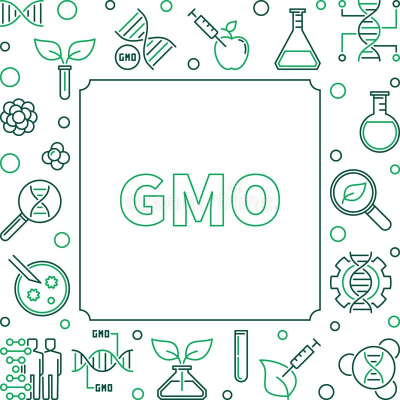 GMO square simple concept linear frame. Vector illustration. GMO square simple concept frame. Vector genetically modified organism illustration in thin line royalty free illustration