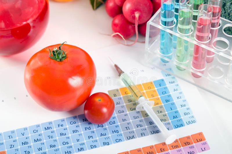 GMO tomatoes, syringe, test tubes in laboratory on periodic table. Tomatoes, syringe, test tubes in laboratory on periodic table. Genetically modified food royalty free stock photography