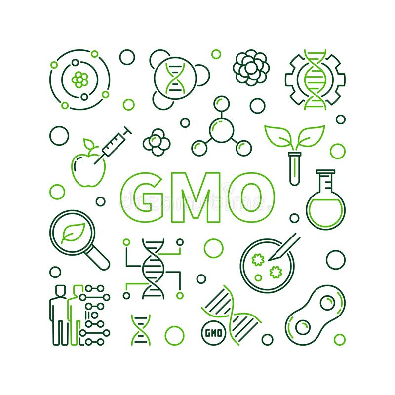GMO vector square outline concept illustration. GMO or Genetically Modified Organism vector square outline illustration royalty free illustration