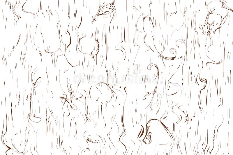 Gnarl line pattern texture wood, surface brown on white background Vector illustration royalty free illustration