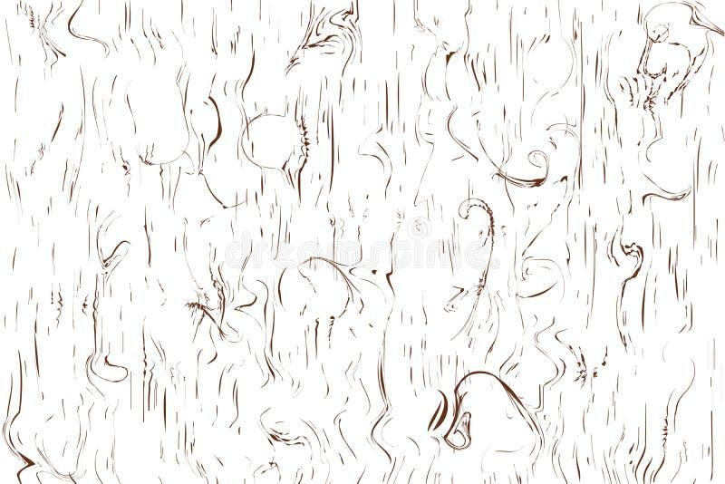Gnarl a linha madeira da textura do teste padrão, marrom de superfície na ilustração branca do vetor do fundo ilustração royalty free