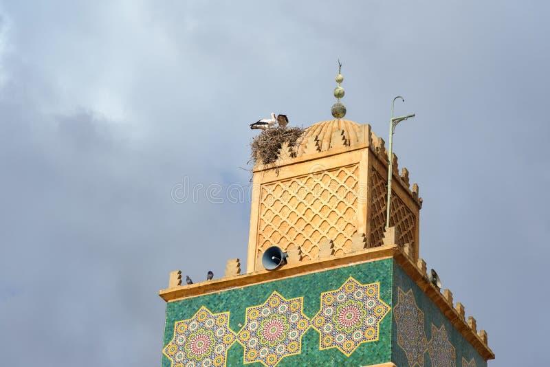 Gniazdeczko bociany na minarecie przy Sidi El Ghamli meczetem w Settat Maroko obrazy stock