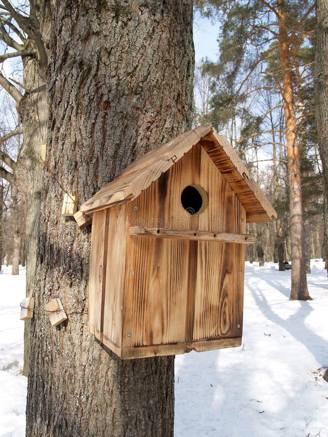 Gniazdować pudełko na drzewie w zimy drewnie zdjęcie stock