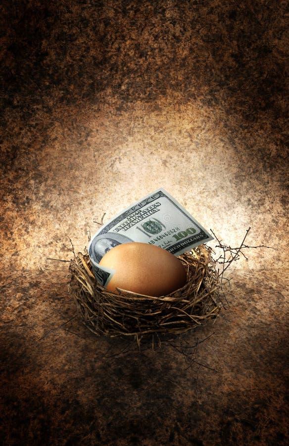 Gniazdowy jajko obrazy royalty free