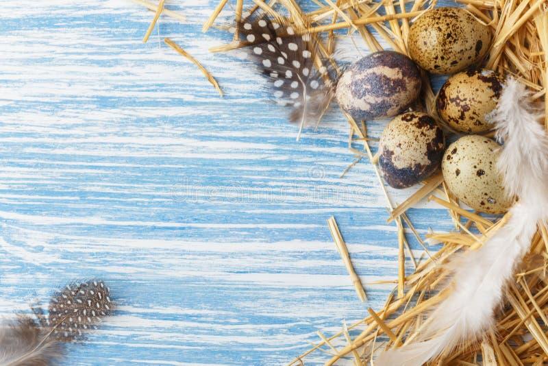 Gniazduje z Wielkanocnymi jajkami na b??kitnym drewnianym tle, odg?rny widok z kopii przestrzeni? zdjęcia royalty free
