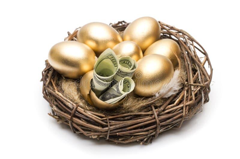 Gniazduje z złotymi jajkami na białym tle Złoci jajka w gniazdeczku z dolarami obraz stock