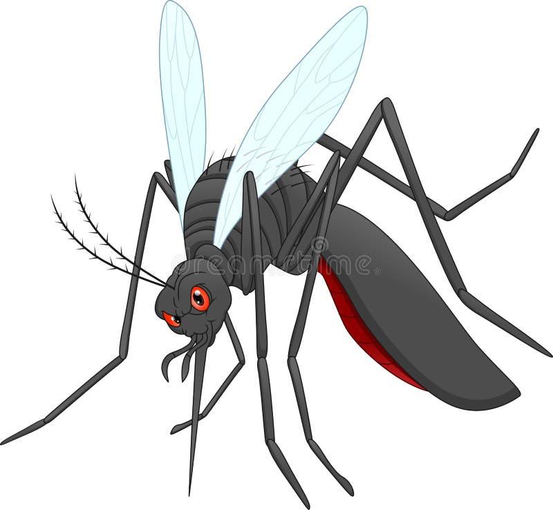 Gniewna komar kreskówka ilustracji