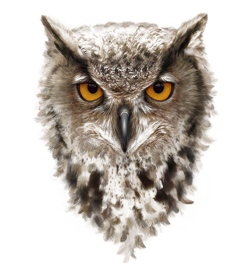 Gniewna sowa z ucho i kolorów żółtych oczami, piórka ilustracji