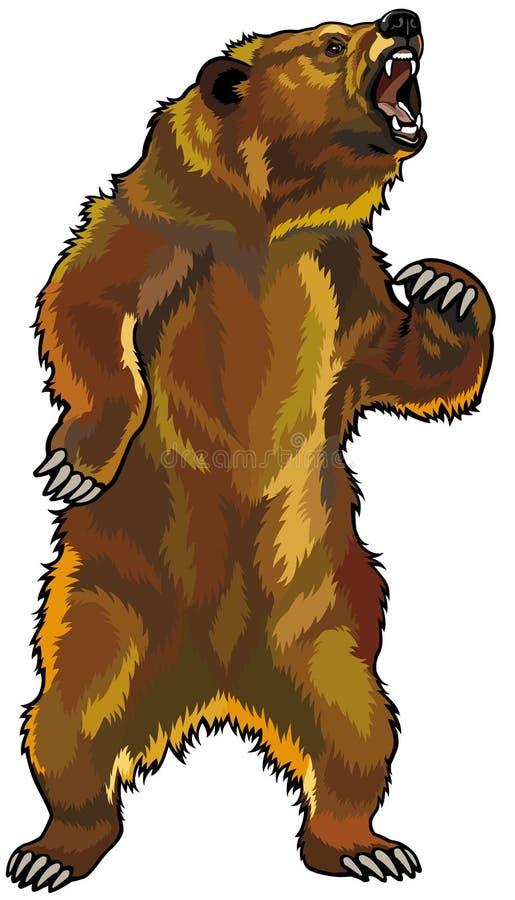 Gniewny grizzly niedźwiedź royalty ilustracja