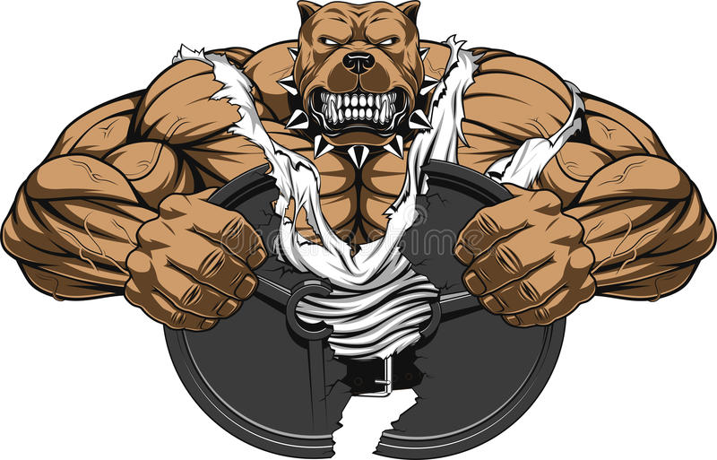 Gniewny psi bodybuilder ilustracji