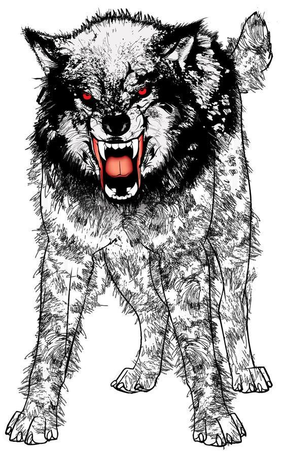 gniewny wilk ilustracji