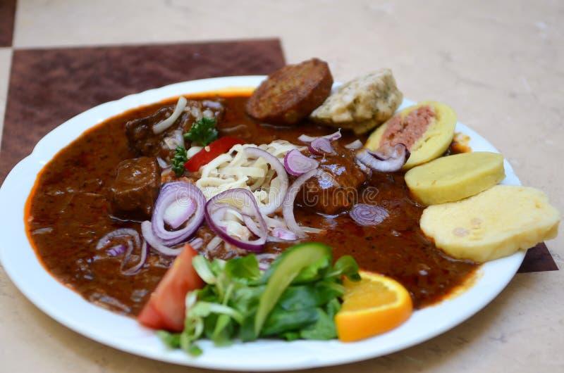 Gnocchi tradizionali originali del goulash di manzo di Ceco Praga (knedliky): cipolla rossa, peperoncini caldi, salsiccia, carne  fotografia stock