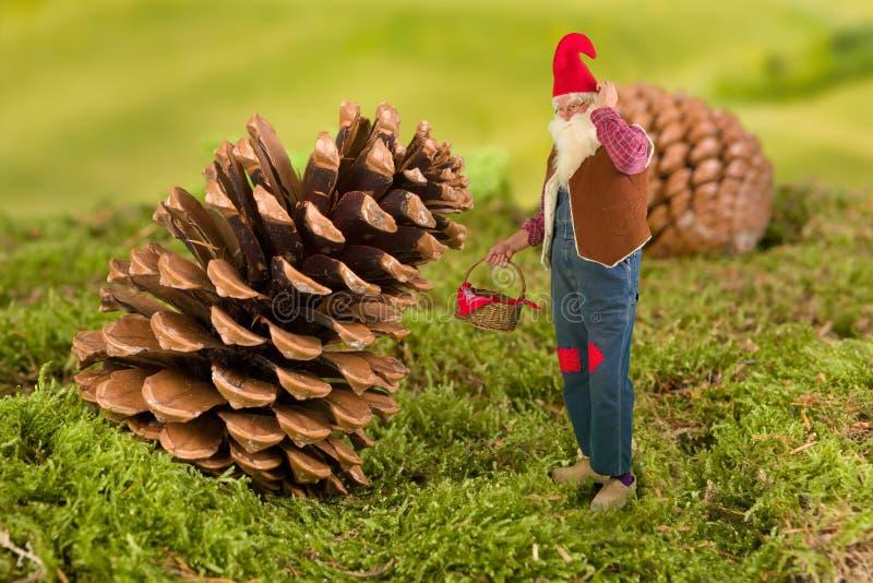 gnome сада корзины стоковая фотография rf