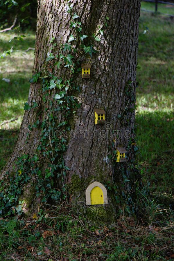 Free Gnome Or Elelf House. Door And Windows On A Tree. Handcraft Work With Children Stock Images - 171834884