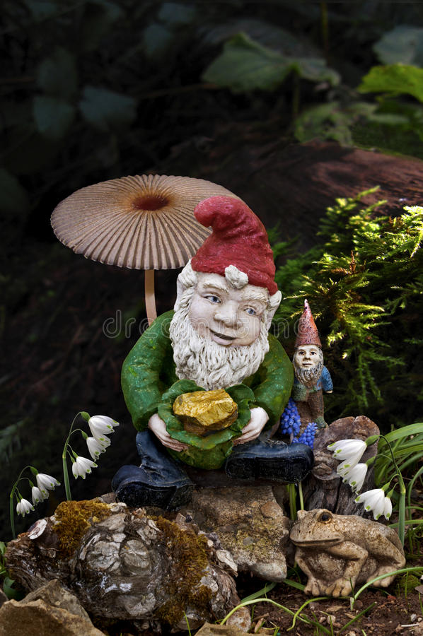 Gnomes in forest with mushroom. Snow drop fairy flowers and frog royalty free stock photos