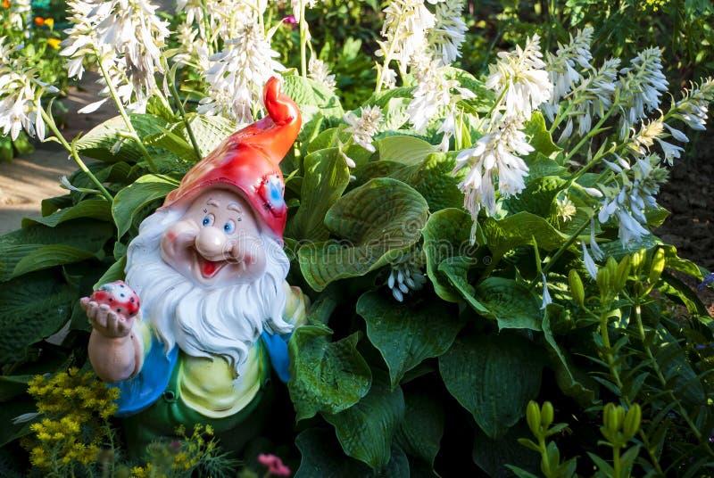 Gnomo do jardim com hosta foto de stock royalty free