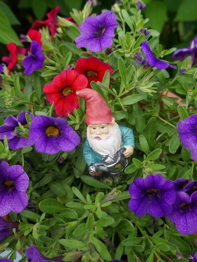 Gnomo do jardim na cama de flor fotografia de stock