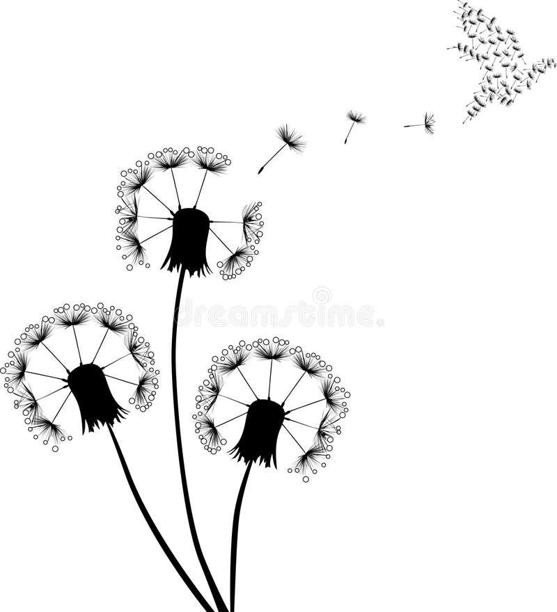 Gołąbka i czarny dandelions royalty ilustracja