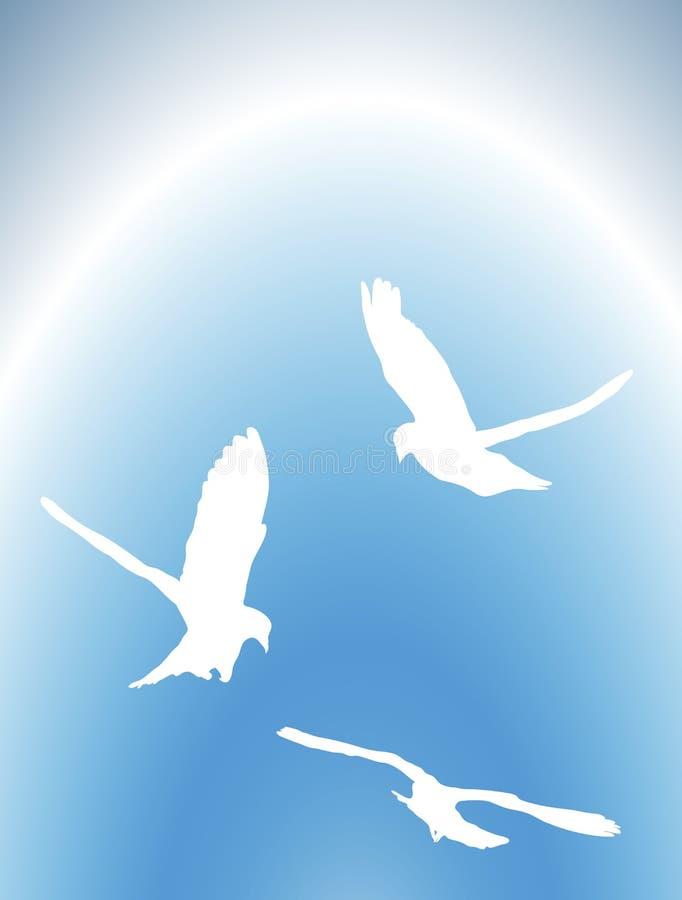 gołębie 1 latają royalty ilustracja