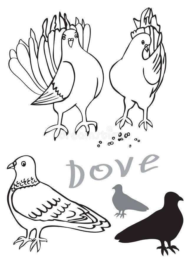 Gołębie na białym tle royalty ilustracja