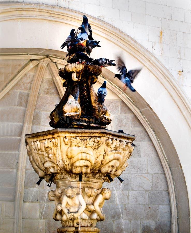 Gołębie na fontanna Pionowo locie fotografia stock