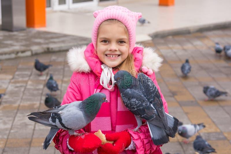 Gołębie siedzą na dziewczynie która karmi one fotografia stock